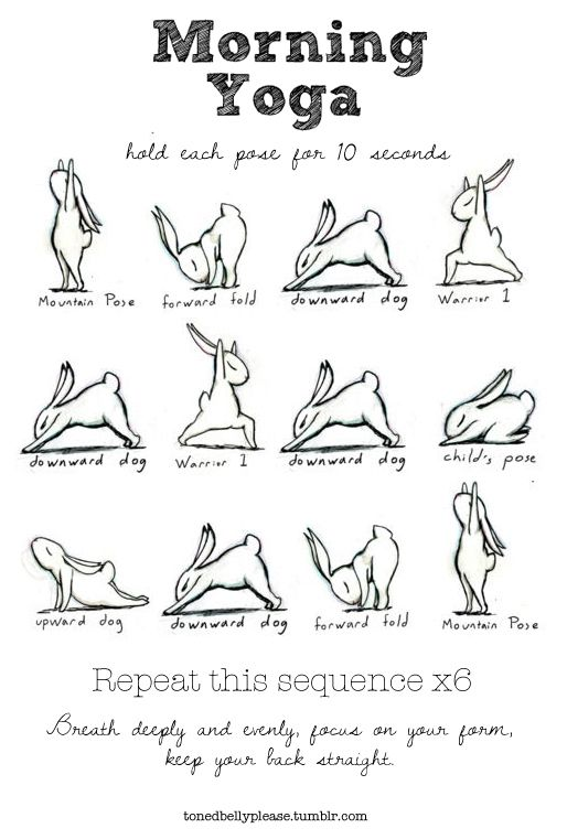 sad-girl-who-lost-her-rocket:  tonedbellyplease:  This is what I do every morning. You would not believe how much my flexibility has improved - I can now do the forward fold with my palms flat on the floor.  If you have more time you can hold each pose for 20 or 30 seconds.  Just reposting for the bunnies.