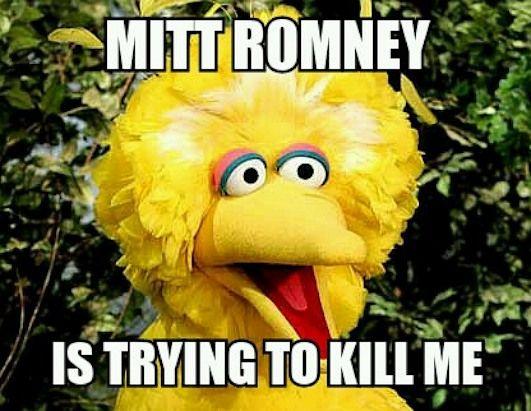 Big Bird Memes Go Viral