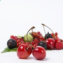 Tart Cherries for Peripheral Polyneuropathies - Todays Practitioner | In this study, presented at the 15th Annual Science and Clinical Application of Integrative Holistic Medicine, Dr. Carson makes the case for 4 ounces of tart cherry juice twice daily as a beneficial therapy without unwanted side effects.