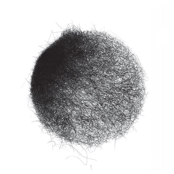 """Mark Nystrom, """"Wind Drawings"""". Each drawing is a record of one day's wind conditions."""
