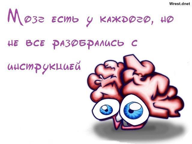 У некоторых она утеряна навеки... фото смешные высказывания | photo-days.ru