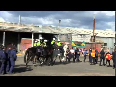 Victoria Police Mounted Branch - A Day with Victoria #Police Mounted Branch during a training exercise with the Public Order Response Team | Victoria Police #horses