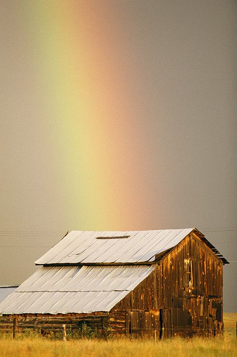 Rainbow... Gen. 9:13 ..I set My rainbow in the cloud, and it shall be for the sign of the covenant between Me and the earth.