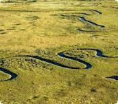 Botswana, Delta dell'Okavango. Osservare il Savuti Channel che è tornato a riempirsi d'acqua dopo oltre 20 anni di assenza – un serpente d'acqua che si snoda fra le sfumature di verde e giallo oro della vegetazione. http://ilviaggioblog.net/