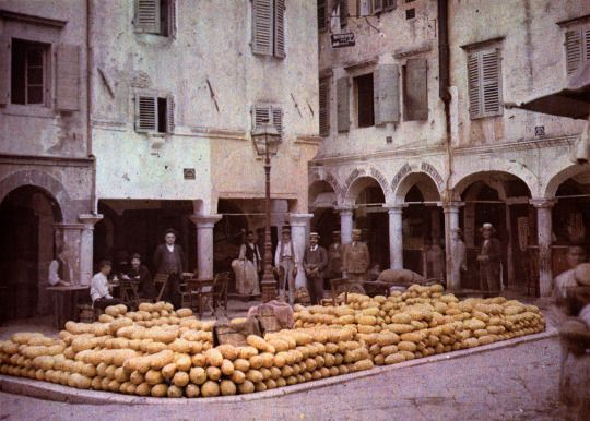 Melons in Corfu - 1913