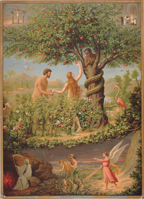 Artips - 'Croquer la pomme' Voilà l'une des scènes les plus célèbres de la Bible ! Adam et Ève, au jardin d'Éden, se trouvent au centre de cette image destinée aux enfants. Ils s'apprêtent à croquer dans une pomme, sur la proposition d'un vilain serpent… Cette faute les chasse du jardin paradisiaque.