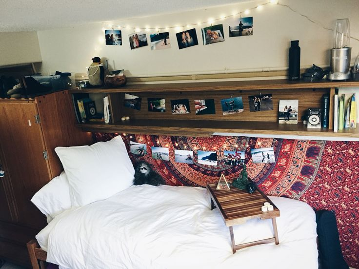 Decorating Ideas > 17+ Best Ideas About University Of Hawaii On Pinterest  ~ 210351_Byu Dorm Room Ideas