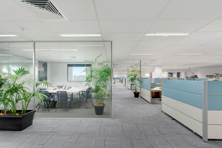 #officefitout #officeinteriors #officealterations #commercialinteriors #officerefurbishment #officepartitions #officeworkstation #officefurniture #officeinteriordesign #glasspartition #officestripout #officeboardroom #officereception #officeretrofit #officerelocation #sydneyrefurbishment #sydneyfitouts #sydneyofficedesign   #sydneyofficepartitions #sydneyofficefitout