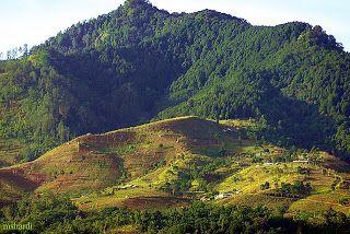Wisata argo Nangorak