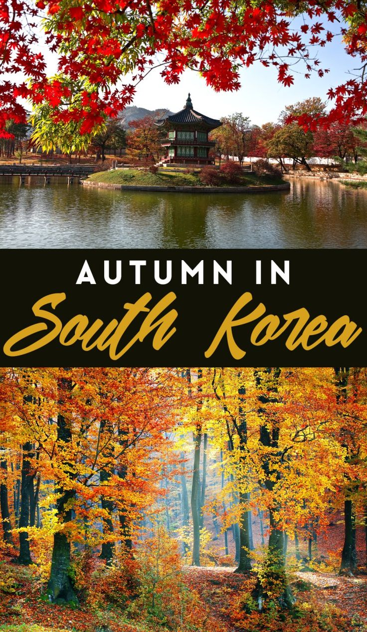 Beautiful Autumn In Korea Ideas On Pinterest Seoul Places To - The beauty of south korea captured in stunning reflective landscape photography