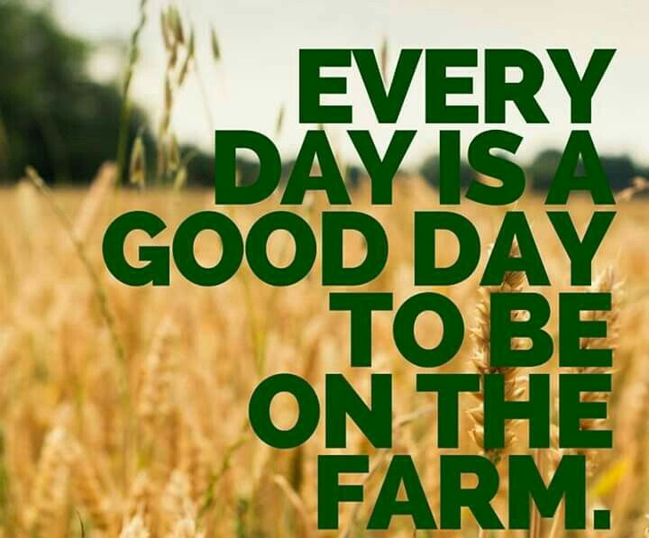 Farming Quotes Delectable 292 Best Love My Life I'm A Farmers Wife Images On Pinterest  Res . Design Ideas