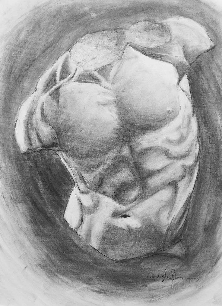 Torso study #1 charcoal on paper 50x70 cm by me
