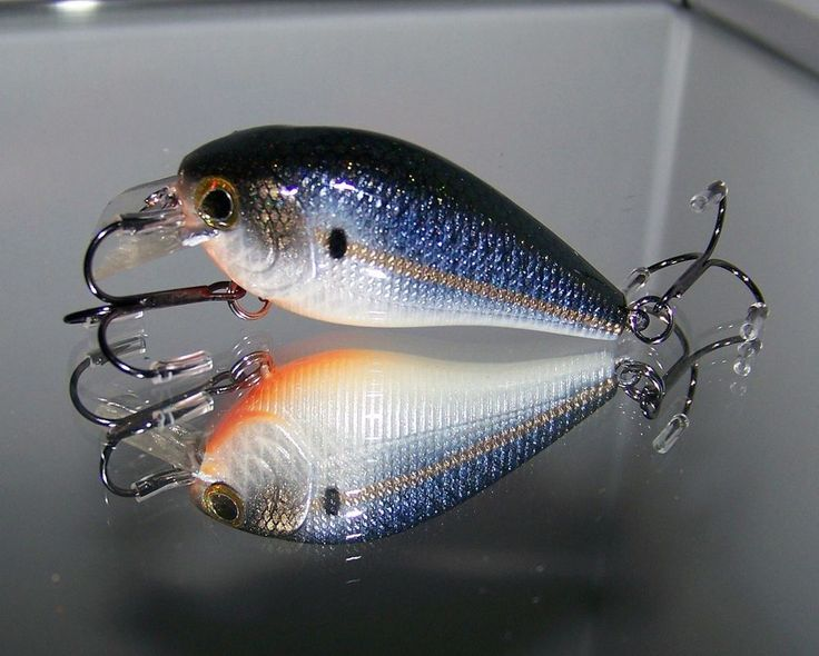 Custom painted squarebill crank bait bass snax hollywood 1 for Personalized fishing lures