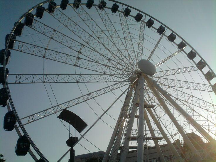 Budapest Eye (last year's photo)
