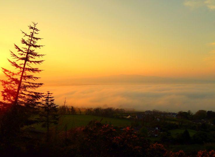 Evening view of Tara Hill