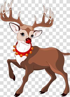 Rudolph The Red Nosed Reindeer Reindeer Hd Transparent Background Png Clipart Cartoon Reindeer Red Nosed Reindeer Christmas Card Illustration