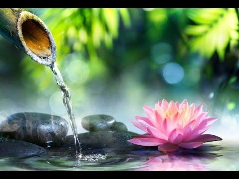3 Hour Relaxing Flute Instrumental: Relaxation Music, Meditation Music, Flute Music, Healing ☯2104 - YouTube