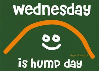 wednesday-is-hump-day-graphic.jpeg (350×251)