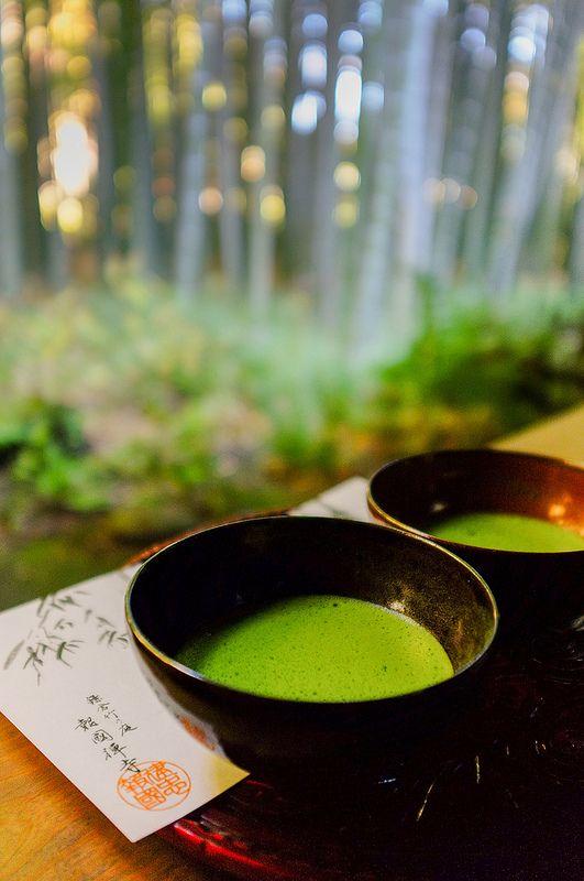 My newly found superfood is matcha tea | Matcha at Hokokuji, Kamakura, Japan