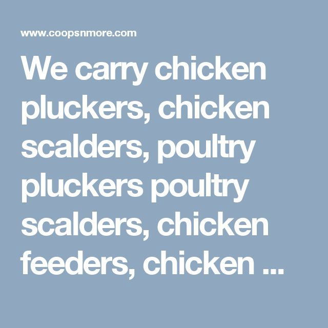 We carry chicken pluckers, chicken scalders, poultry pluckers poultry scalders, chicken feeders, chicken waterers, poultry feeders, poultry waterers, chicken coops, chicken runs, poultry coops, poultry runs, and more.