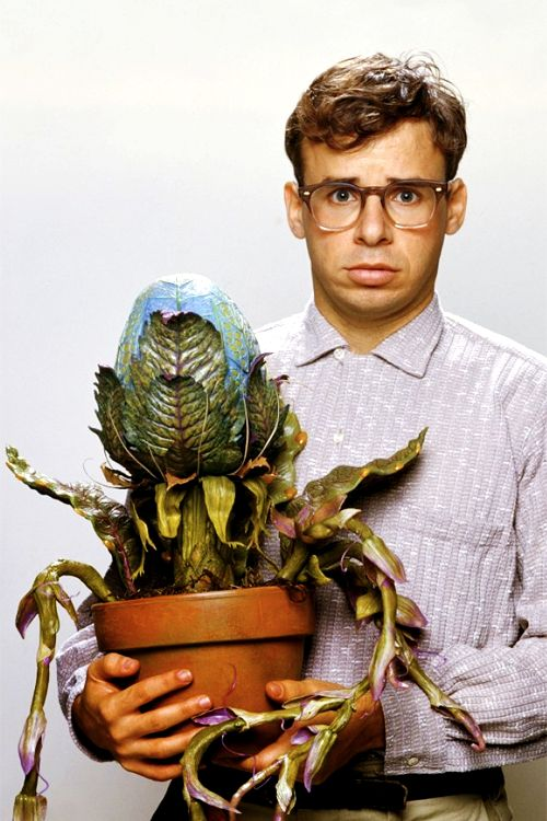 Rick Moranis as Seymour Krelborn in Little Shop of Horrors- I love this movie so much!