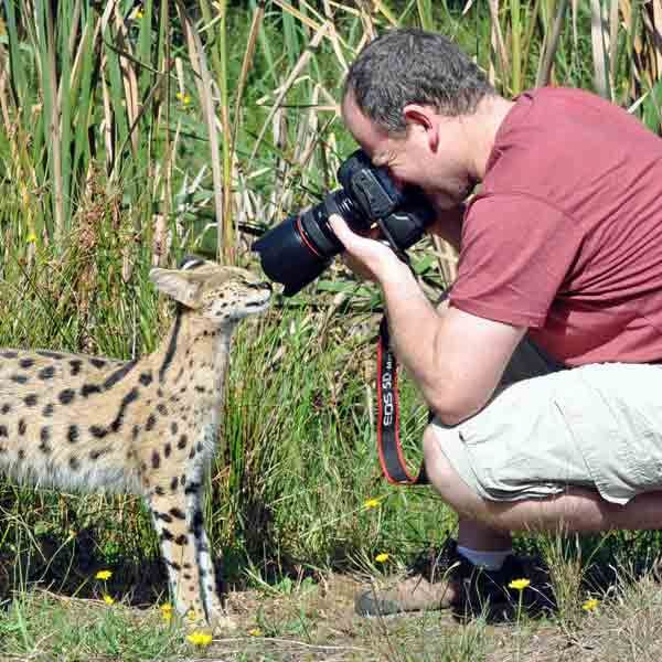 Our Photographic Tour is popular amongst photo enthusiasts and semi-professional photographers who love our natural enclosures and the opportunity to get up close to the cats.