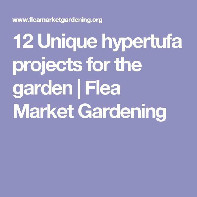 12 Unique hypertufa projects for the garden | Flea Market Gardening