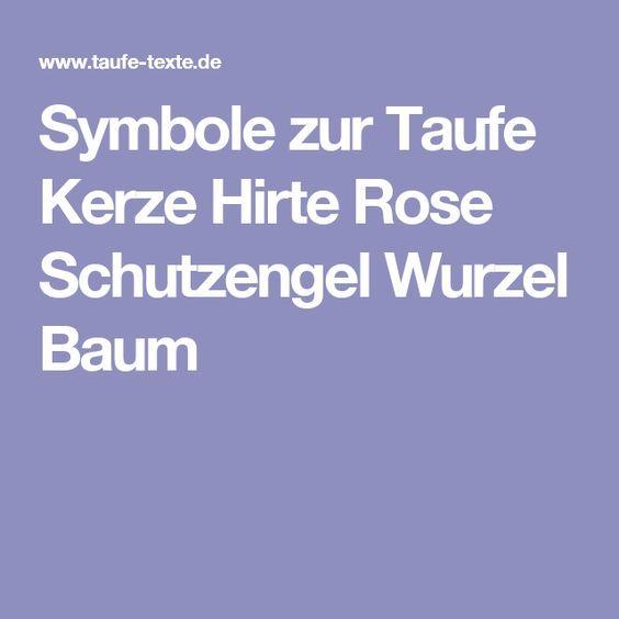 25+ best baumwurzel ideas on pinterest | buchenholz, baumwurzeln ... - Massive Wurzel