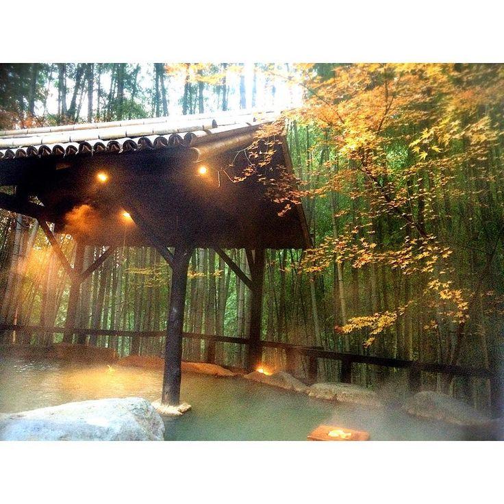 あなたにとって特別な日。その一日をここ「竹ふえ」で過ごしてみてはいかがですか?今回は、本当は誰にも教えたくない、熊本県の秘境白川源泉の山荘「竹ふえ」の魅力をたっぷりお伝えしたいと思います!