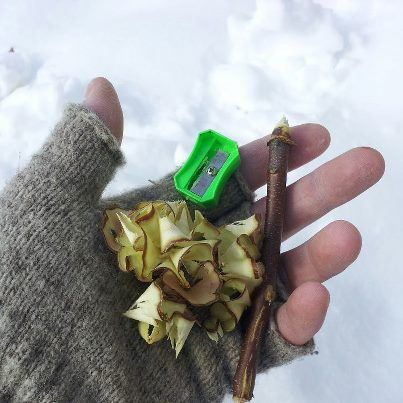 Kindling from twigs and a pencil sharpener