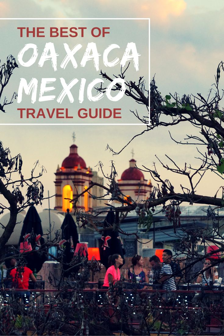Oaxaca is often cited as one of the cultural and culinary hubs of Mexico. Check out our travel guide highlighting the top things to do in Oaxaca including excursions, eating & drinking, and where to stay!