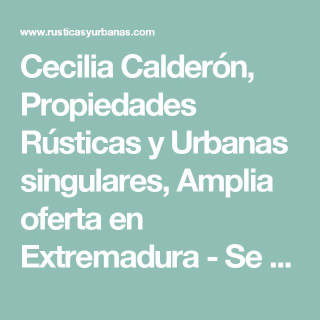 Cecilia Calderón, Propiedades Rústicas y Urbanas singulares, Amplia oferta en Extremadura - Se alquila BAR CON SALIDA DE HUMOS Y TERRAZA