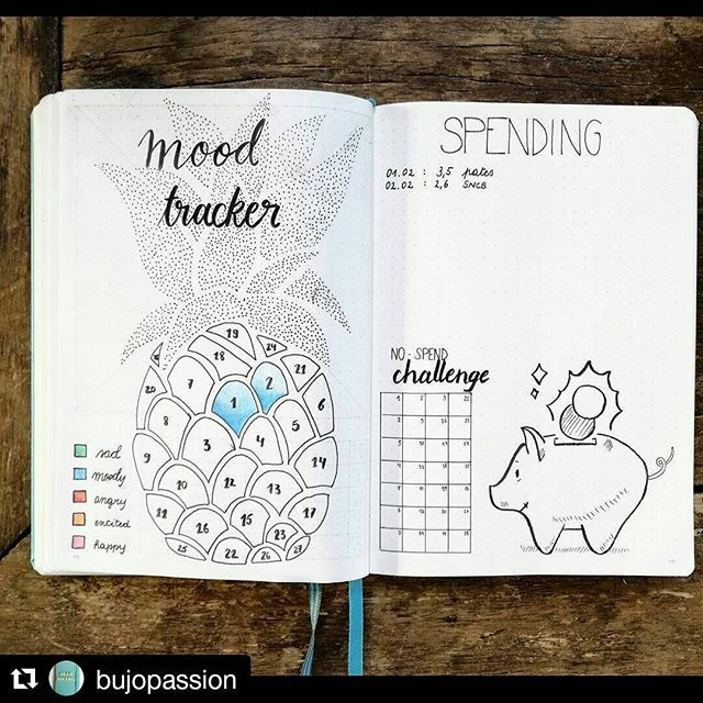 mood tracker is an interesting idea.