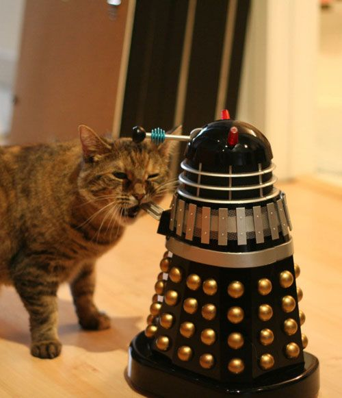 You want to exterminate something? Then exterminate my hairball.   http://www.bbcamerica.com/anglophenia/files/2011/02/catvsdalek.jpg