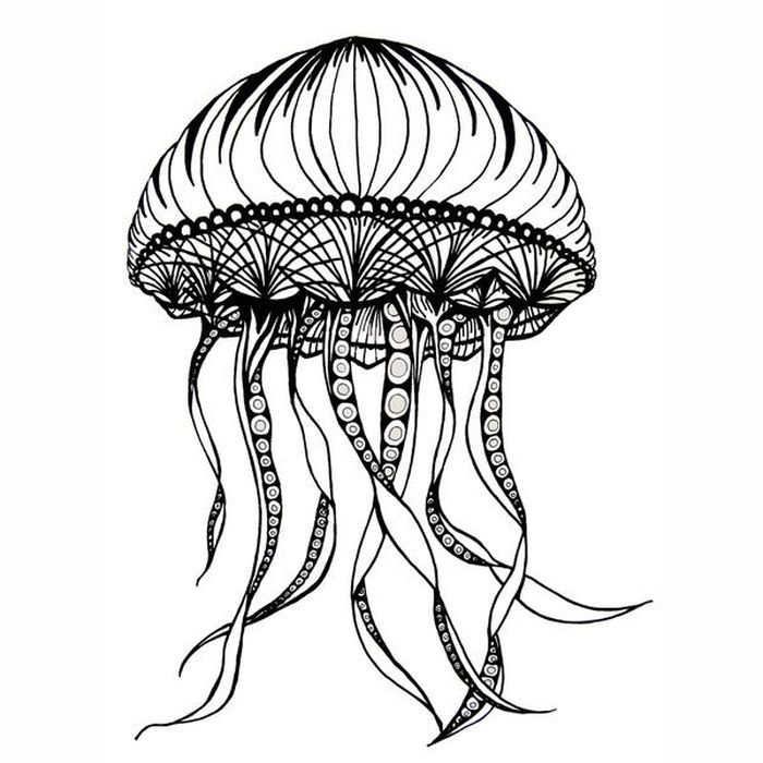 Jellyfish Coloring Pages Free Coloring Sheets Jellyfish Print Art Animal Coloring Pages Octopus Coloring Page
