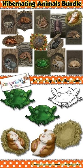 This Hibernating Animals Clip art bundle consists of realistic images. There are a total of 14 animals. The bundle comes in 3 styles of clip art: the animals alone, clip art of their place of hibernation, and clip art of the animals in their place of hibernation.