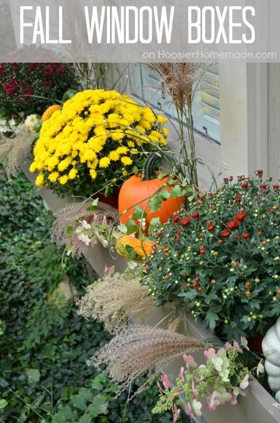 fall outdoor decorating how to decorate window boxes on hoosierhomemadecom