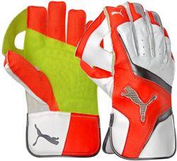 Puma evoSPEED 3 WK Gloves JUNIOR