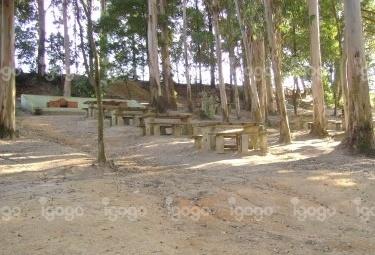 Parque de Lazer da ARVISCAL, no  Troviscal, Oliveira do Bairro, Aveiro, Portugal
