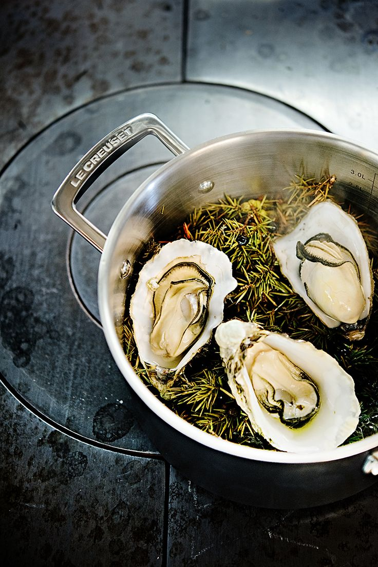 Le Creuset Bi-Ply Deep Casserole (Hot Oysters with Juniper Branches)