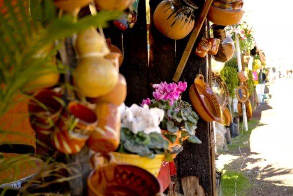 En la Ciudad de México, pero en las afueras, en donde hay más flores y árboles y borregos andando por las calles, ahí, en un lugar llamado Actopan se celebra cada año la feria del mole.