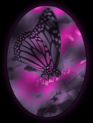 Blue And Purple Butterfly Background   Purple Butterflies Wallpaper   Butterfly