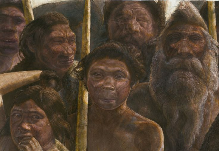 The oldest known human DNA found yet reveals human evolution was even more confusing than before thought, researchers say. The genetic material came from the bone of a hominin living in what is now the Sima de los Huesos in Northern Spain approximately 400,000 years ago during the Middle Pleistocene.