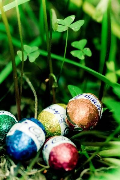234 best Pâques images on Pinterest Easter, Easter bunny and - Ou Trouver De La Terre De Jardin