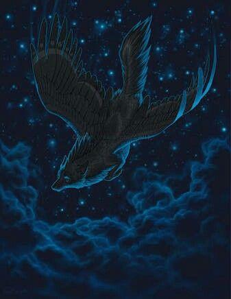 Minha liberdade se encontra à noite, na noite. E através da noite meu coração pode se libertar, cada estrela é uma explosão de uma batida da música que toca em minha cabeça, e me liberta. Deixe a música rolar. Deixe as asas voarem.