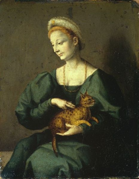 Bacchiacca, Woman with a Cat, 1540s?, Staatliche Museen - Berlin.      Web Gallery of Art—http://www.wga.hu/frames-e.html?/html/b/bacchiac/index.html (bottom of page) (downloaded February 2009)   Ciudad dela pintura—http://pintura.aut.org/SearchProducto?Produnum=27053 (also February 2009)