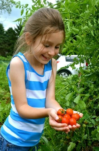 tips for organic gardening with kids