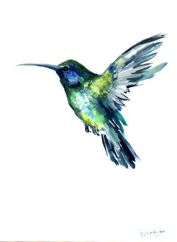 Flying Hummingbird, Original watercolor painting, 12 X 9 in, green blue bird art, bird painting on Etsy, $36.00