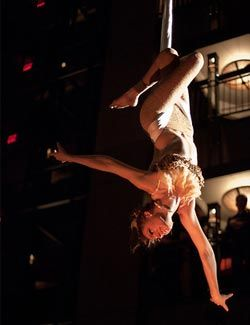 Our Instructors : Pole Dancing Classes NYC : Aerial Hoop & Fabric ...