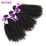 iVogue Hair Brazilian Afro Kinky Curly Human Hair Bundles Virgin Human Hair Extensions 3 pcs/lot 300g Total Full Head Weaves (8 8 8)